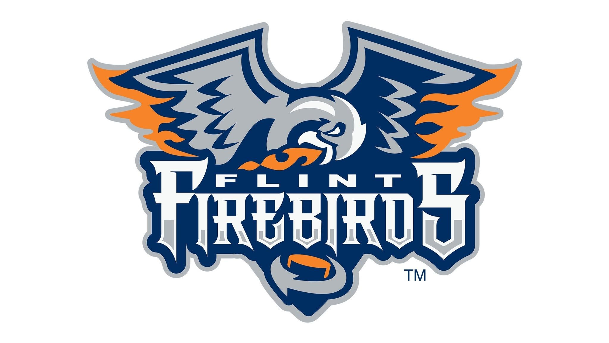 Flint Firebirds vs. Kitchener Rangers