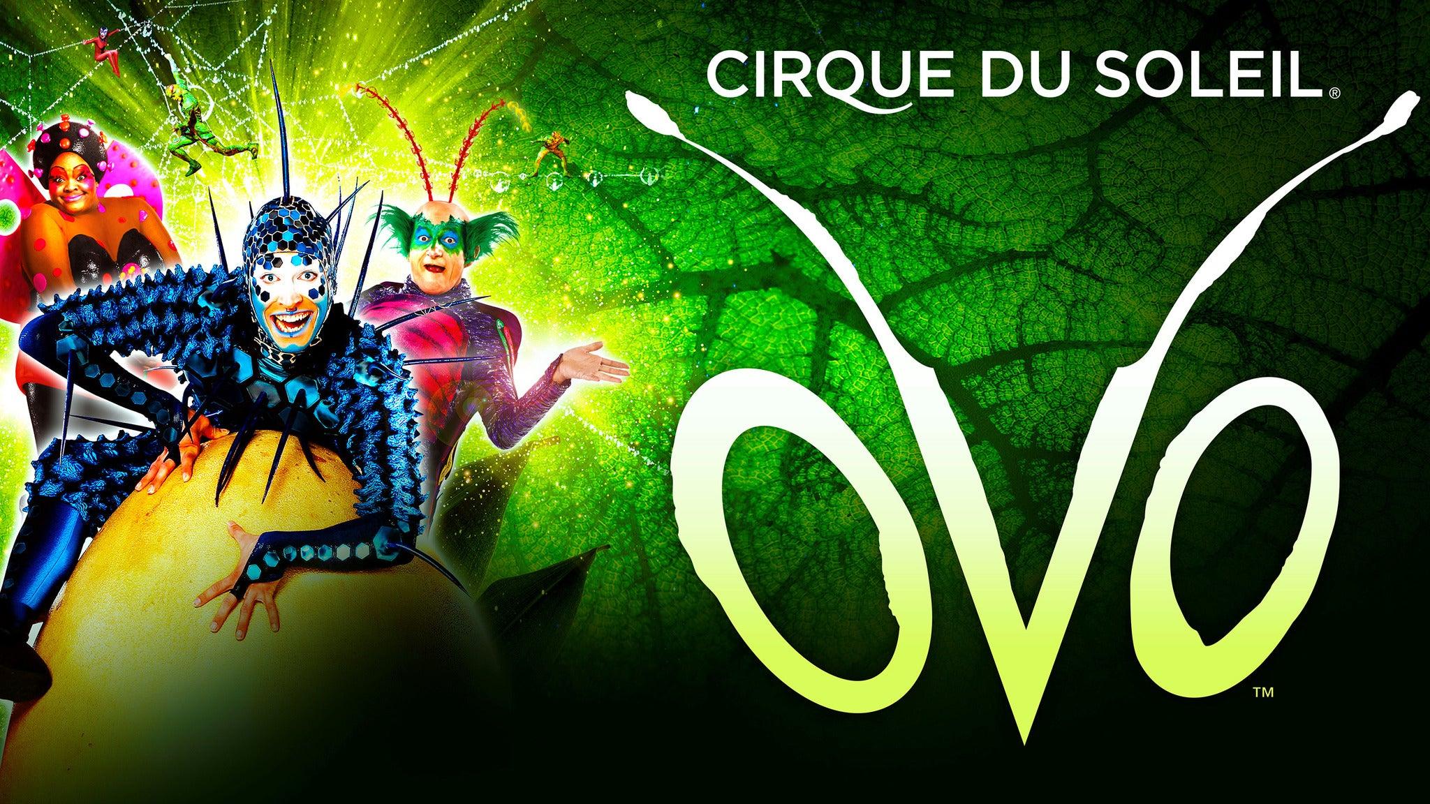 Cirque du Soleil: OVO at Don Haskins Center