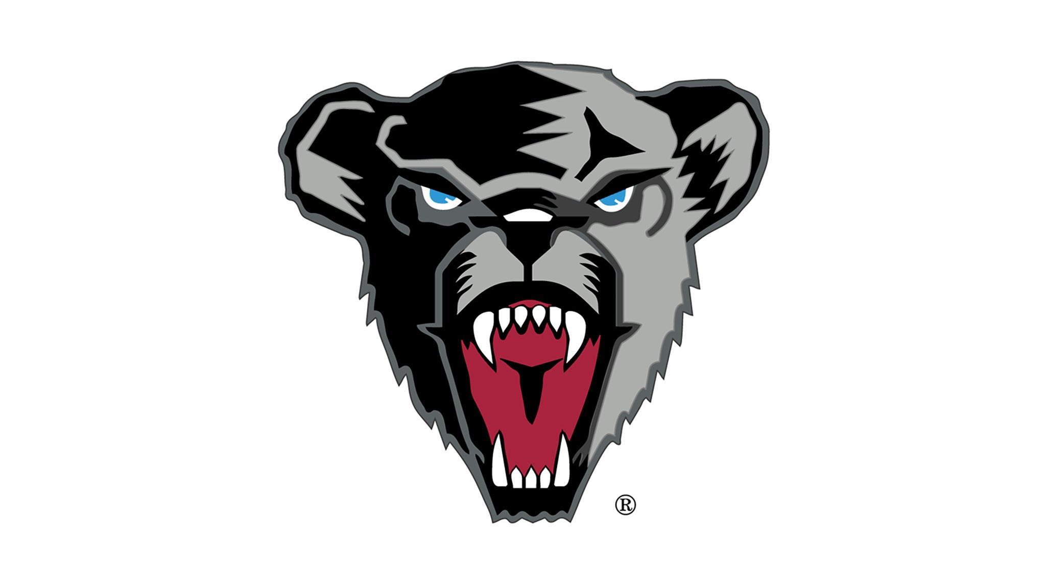 University Of Maine Women's Basketball