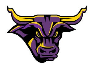 Minnesota State University, Mankato Mavericks Mens Hockey