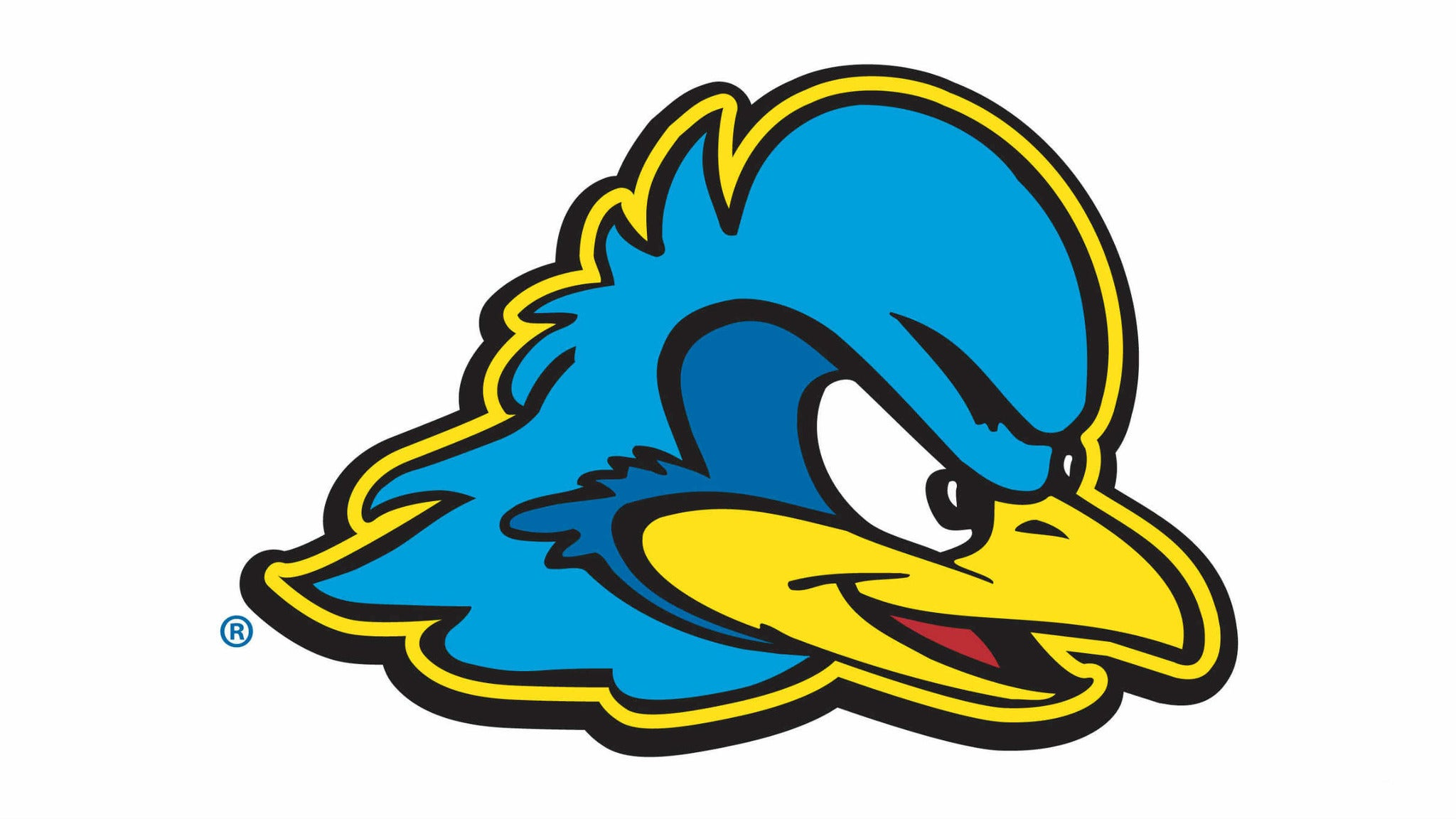 University of Delaware Blue Hens Mens Basketball
