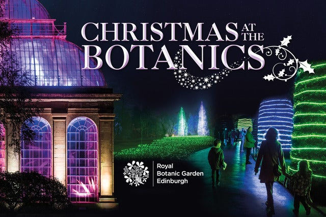 Image result for christmas at the botanics