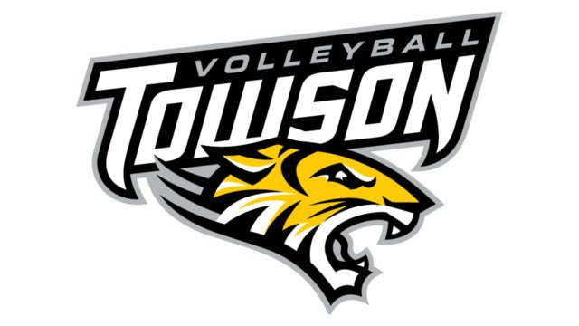 Towson University Tigers Volleyball