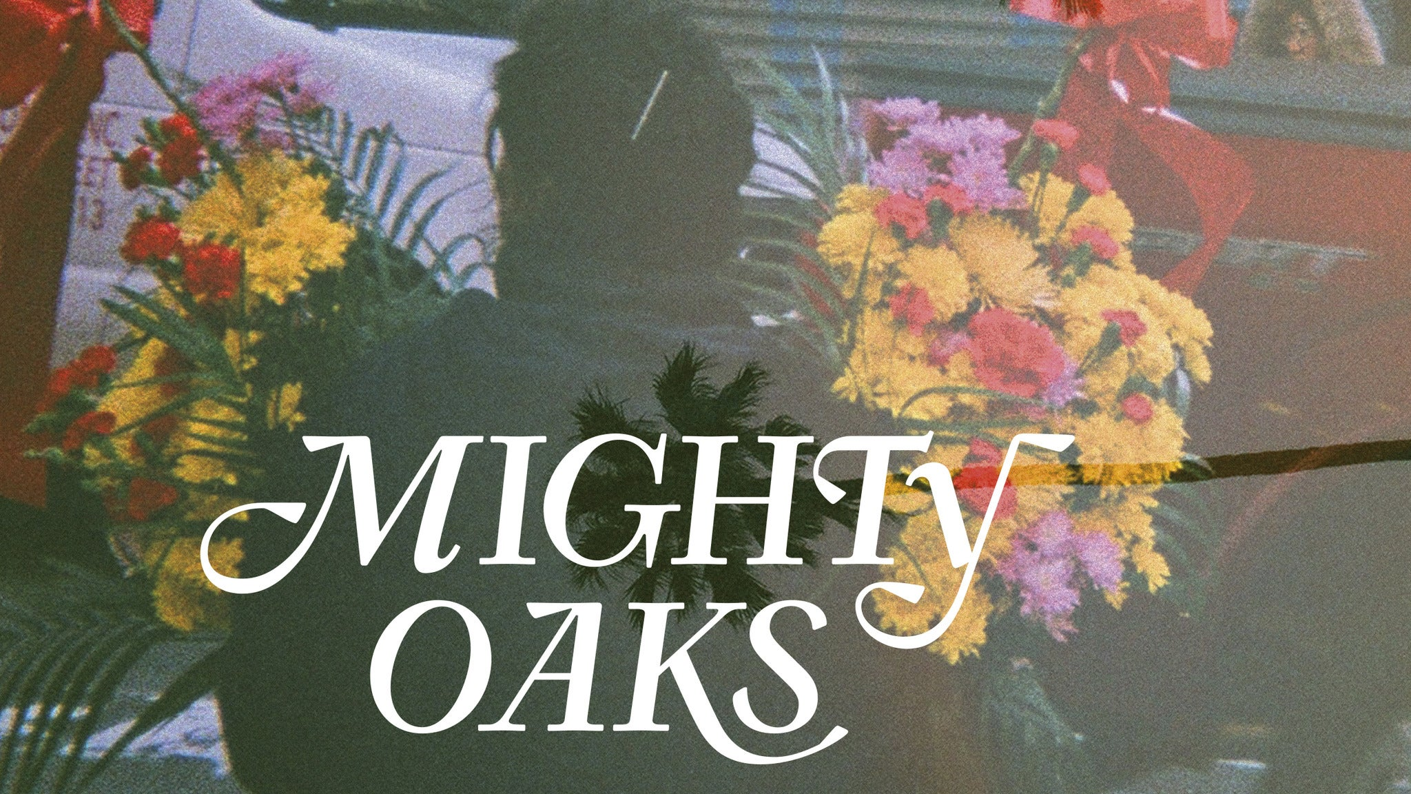 Mighty Oaks at Subterranean