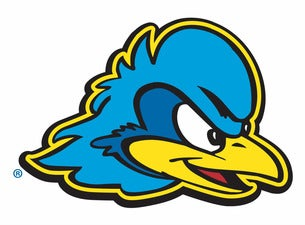 University of Delaware Blue Hens Womens Basketball