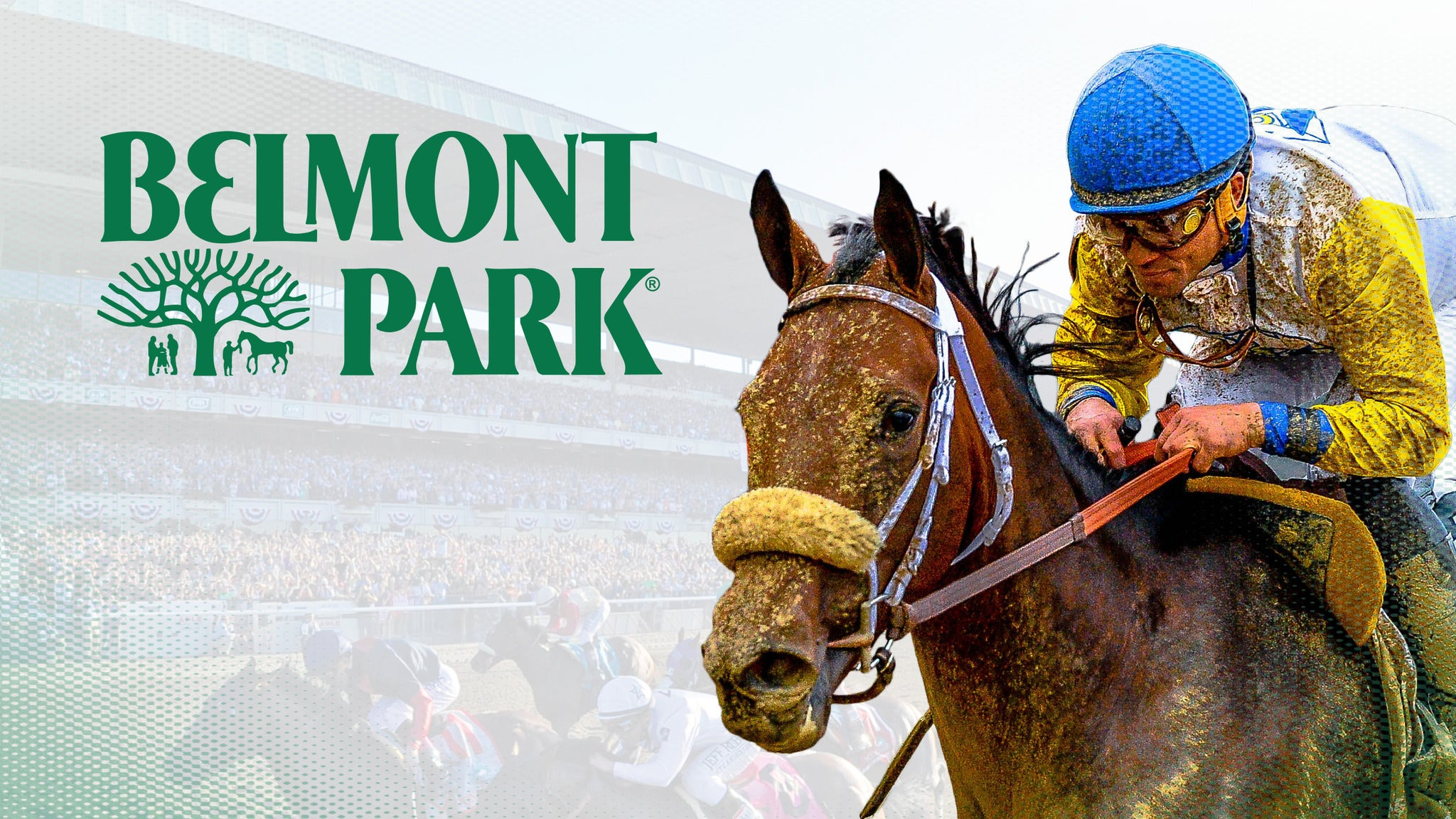 Belmont Park - Reserved Seating