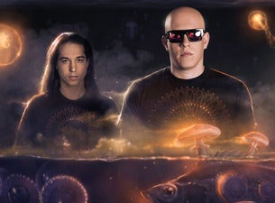 Infected Mushroom - LIVE in Detroit!