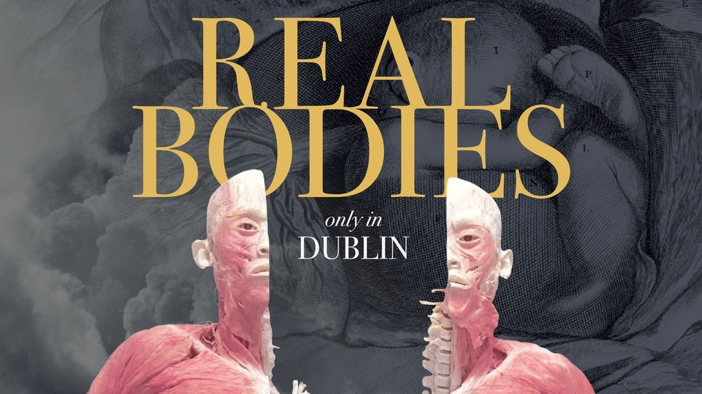 Hotels near Real Bodies Events