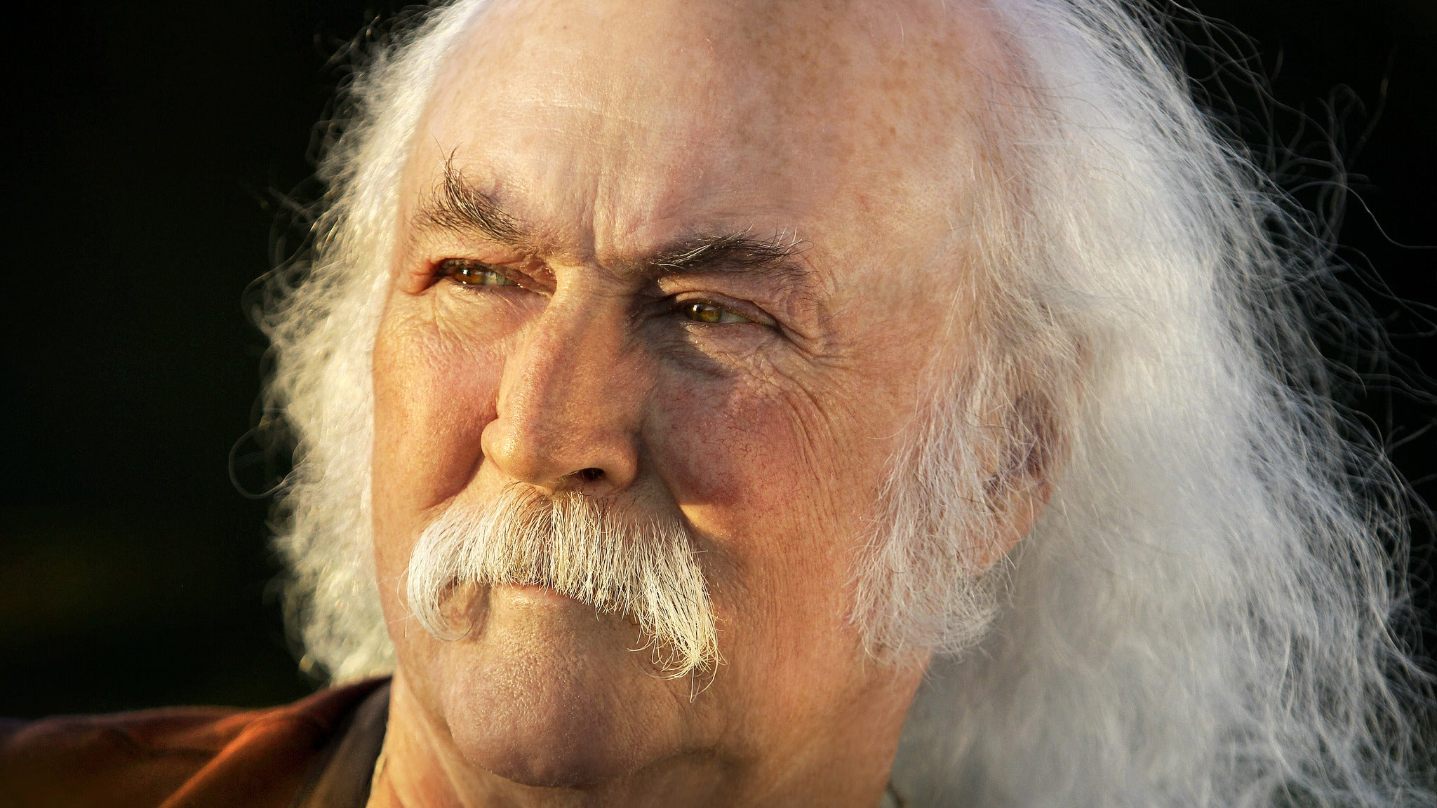 David Crosby & Friends, at State Theatre