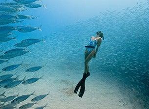 Ocean Film Festival tickets (Copyright © Ticketmaster)