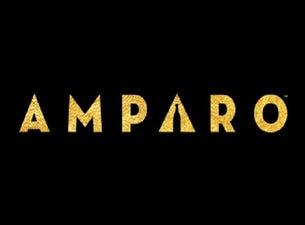 The AMPARO Experience