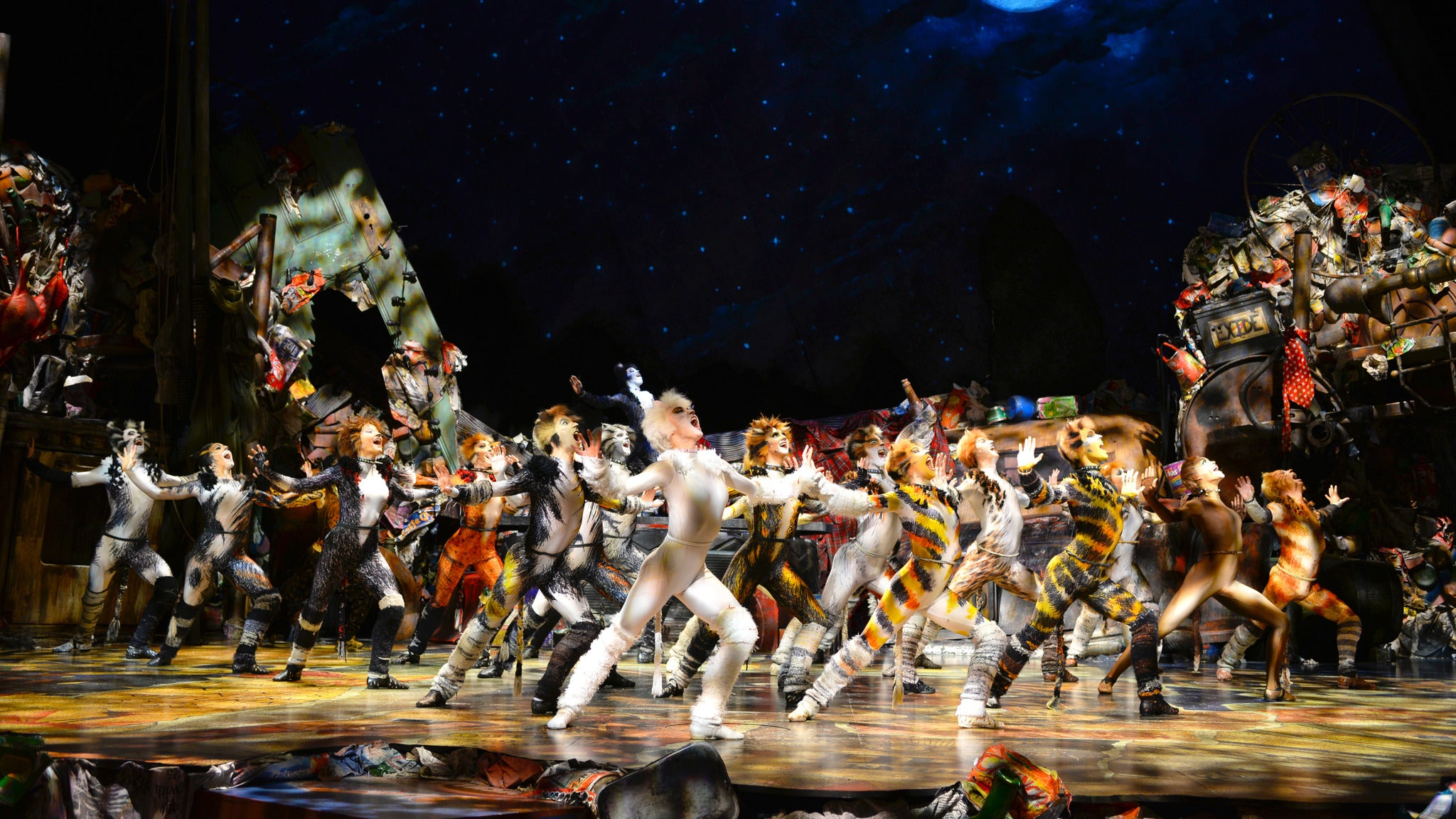 Cats at Chapman Music Hall - TPAC - Tulsa, OK 74103