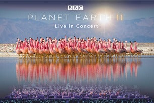 Planet Earth II - Live In Concert Seating Plan Genting Arena
