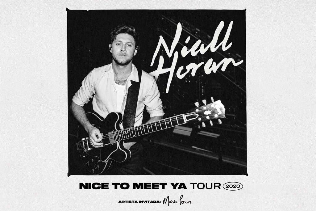 Niall Horan - Platinum