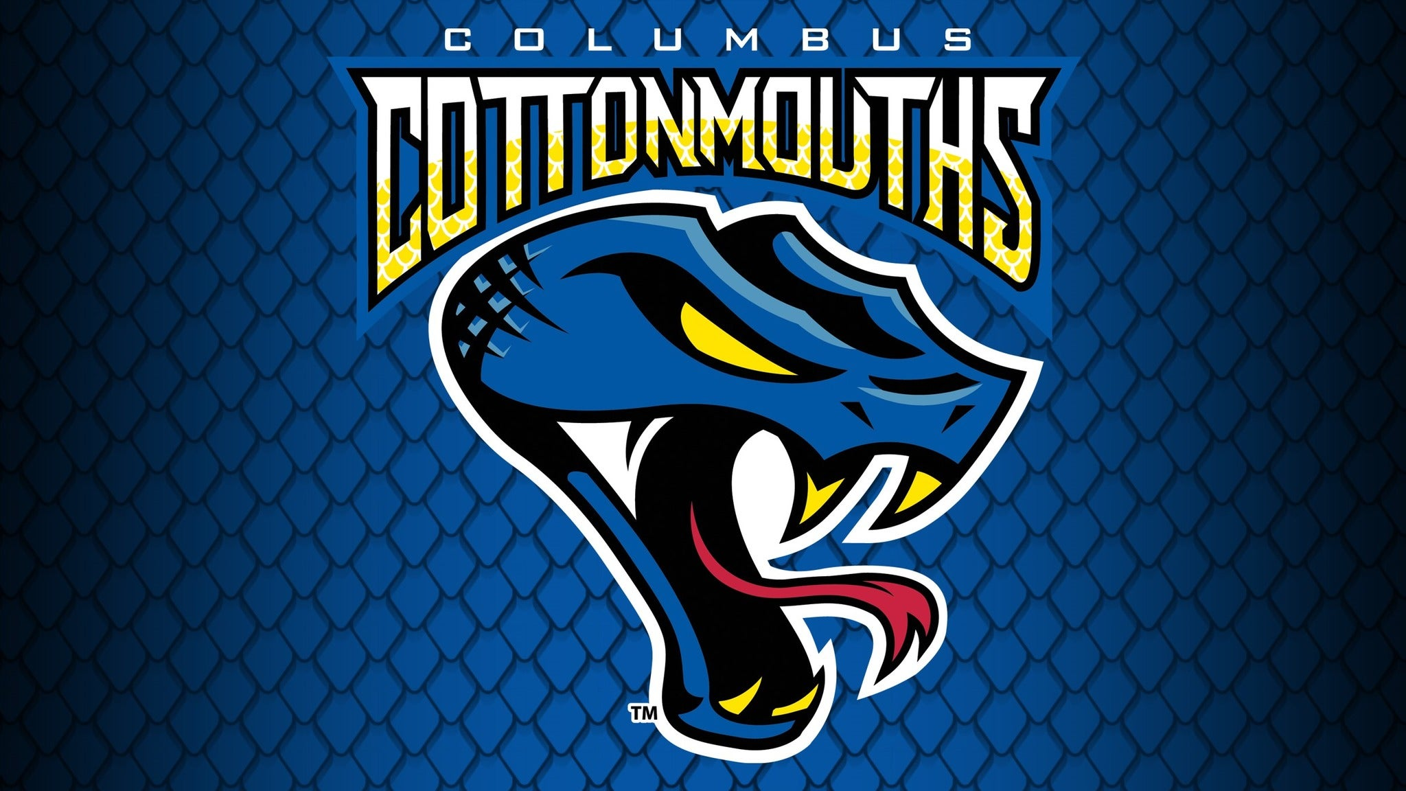 Columbus Cottonmouths vs. Mississippi RiverKings