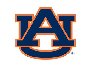 Auburn Tigers Mens Basketball