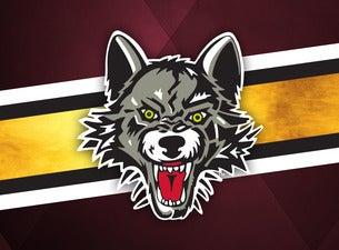 Chicago Wolves vs. Milwaukee Admirals