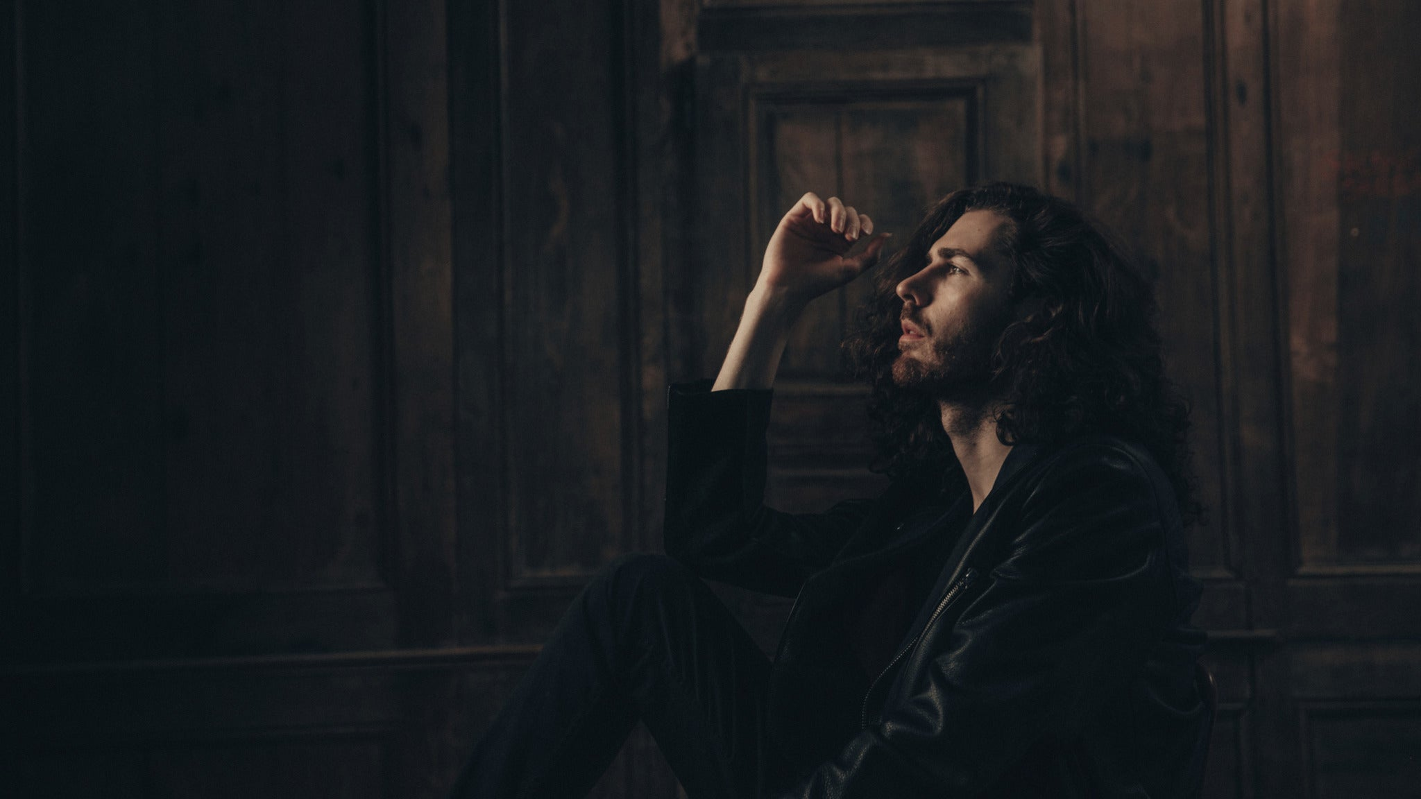 Hozier at Fox Theater - Oakland