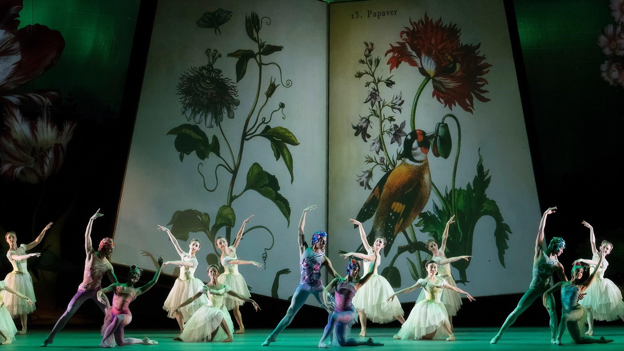 Atlanta Ballet Presents The Nutcracker - Atlanta, GA 30339