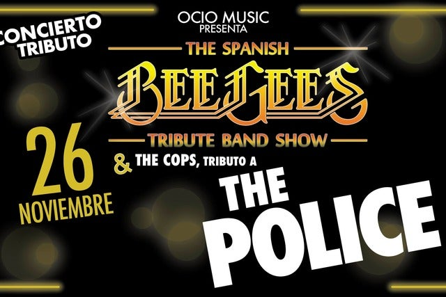 Tributo a Bee Gees & Phil Collins