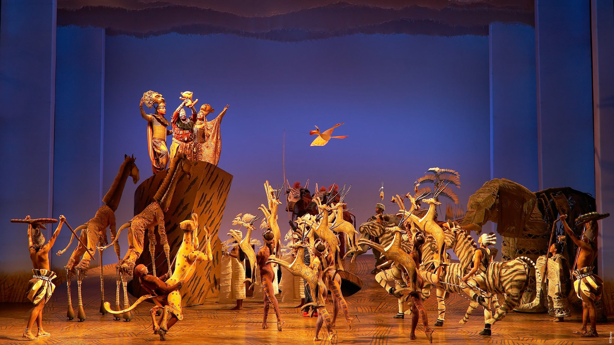 The Lion King at Buell Theatre