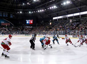 Share a Suite - Belfast Giants