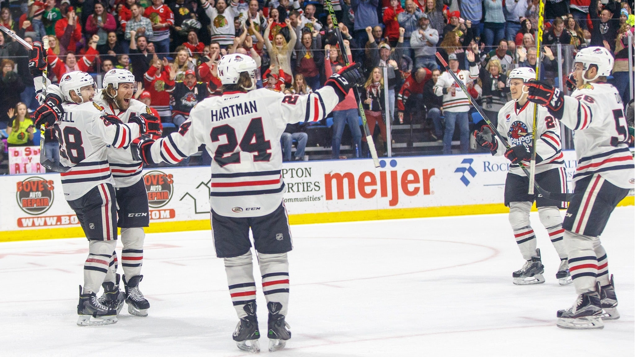 Rockford Icehogs Vs Milwaukee Admirals - Rockford, IL 61101