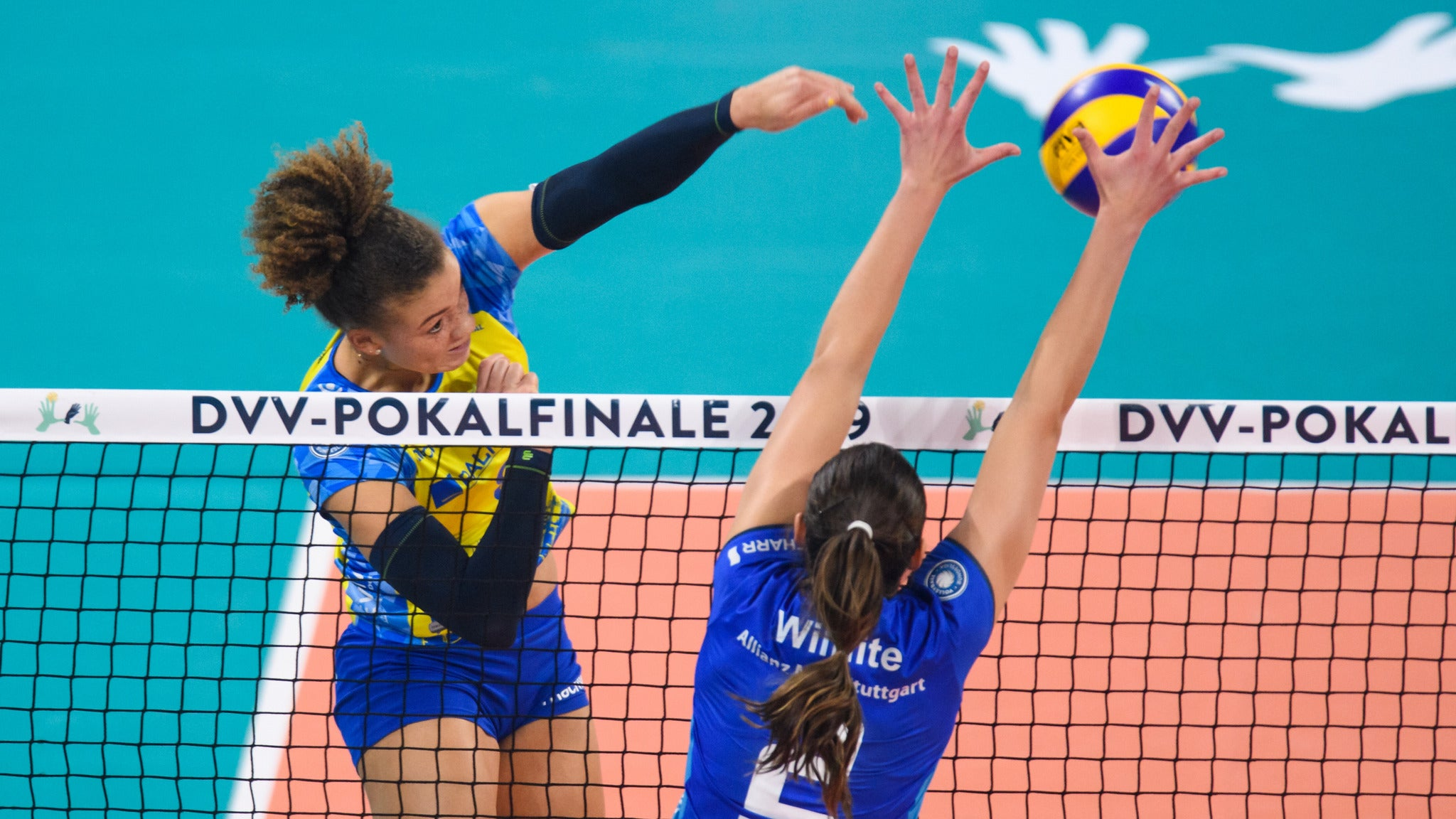 Volleyball DVV-Pokalfinale