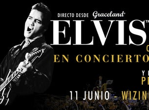 Elvis In Concert - Seen Unseen - Live On Screen