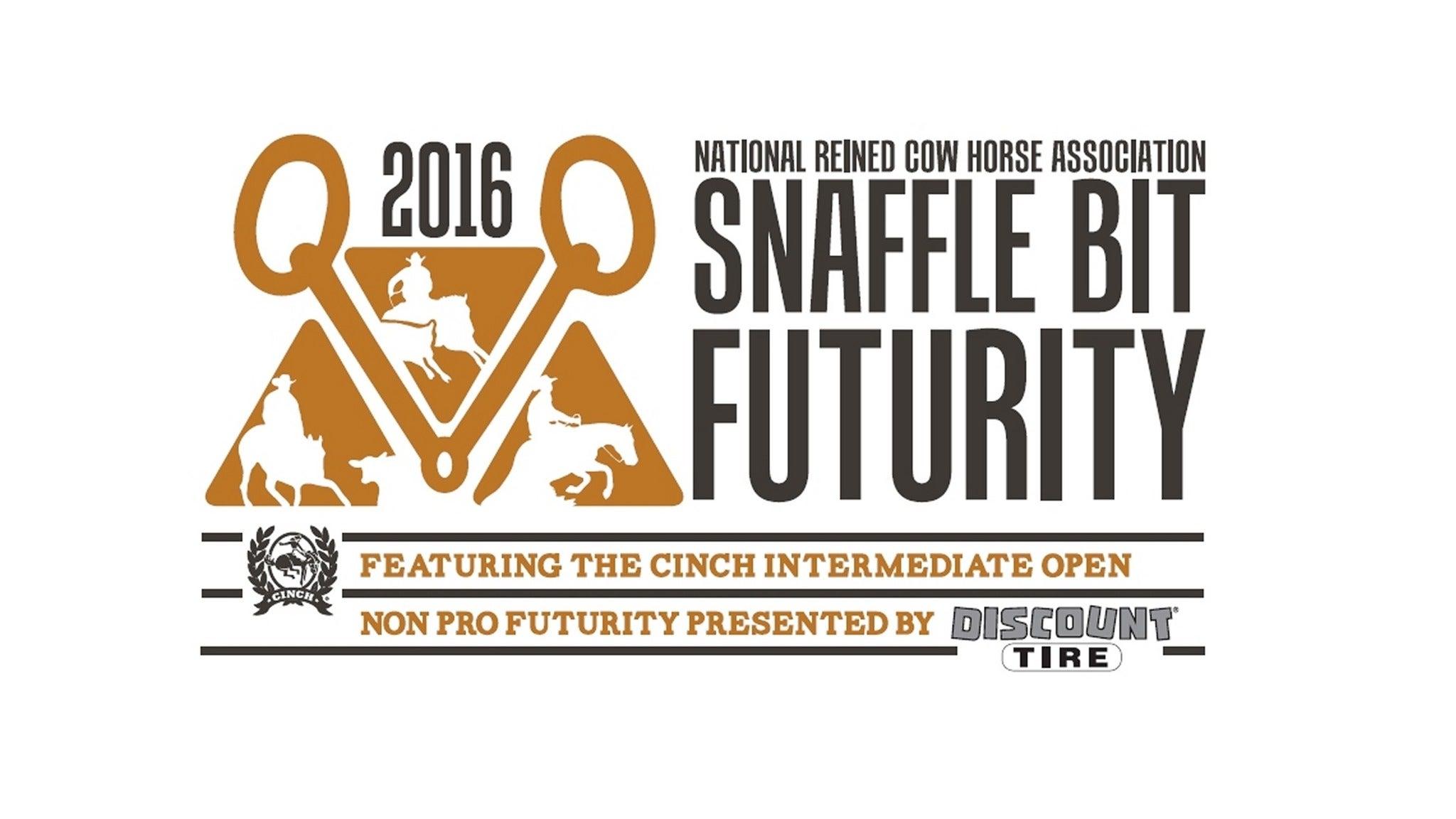 NRCHA Snaffle Bit Futurity at Reno Livestock Events Center