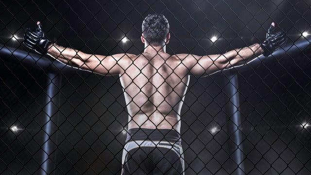 MMA - Mixed Martial Arts