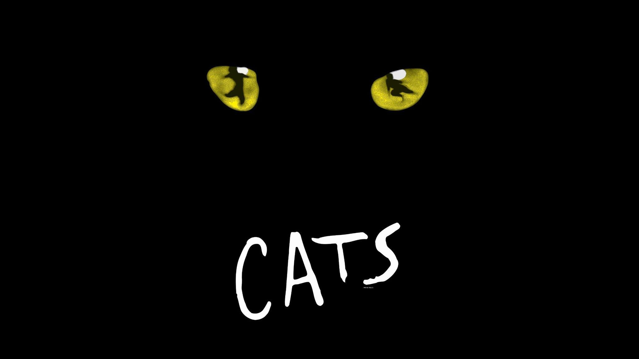 Cats at David A. Straz Center - Carol Morsani Hall
