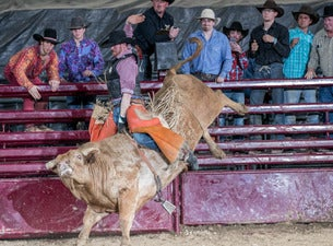 Xtreme Bulls And Bands with Joe Stamm Band