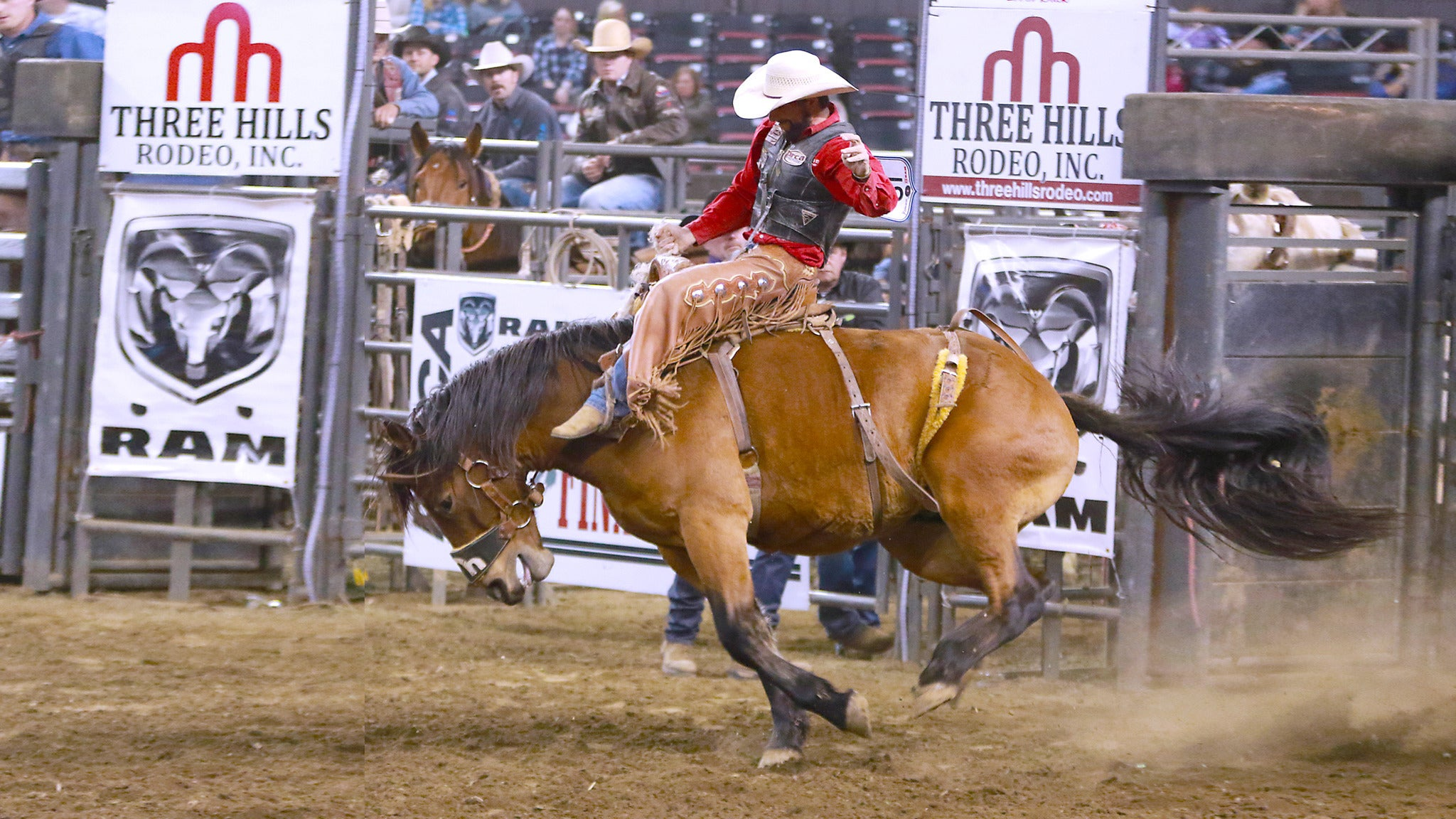 North American Championship Rodeo at Freedom Hall