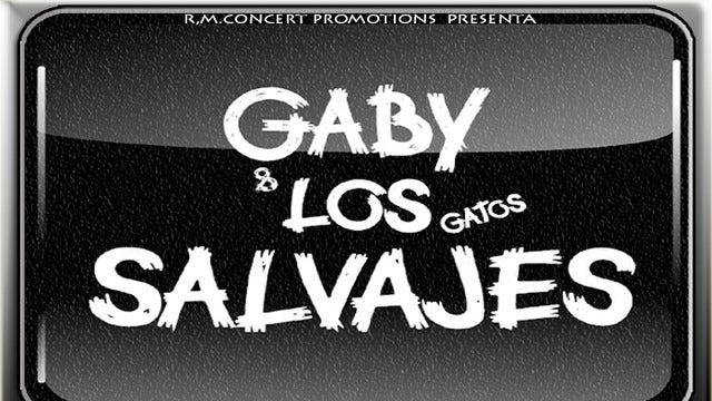Gaby y los Gatos Salvajes