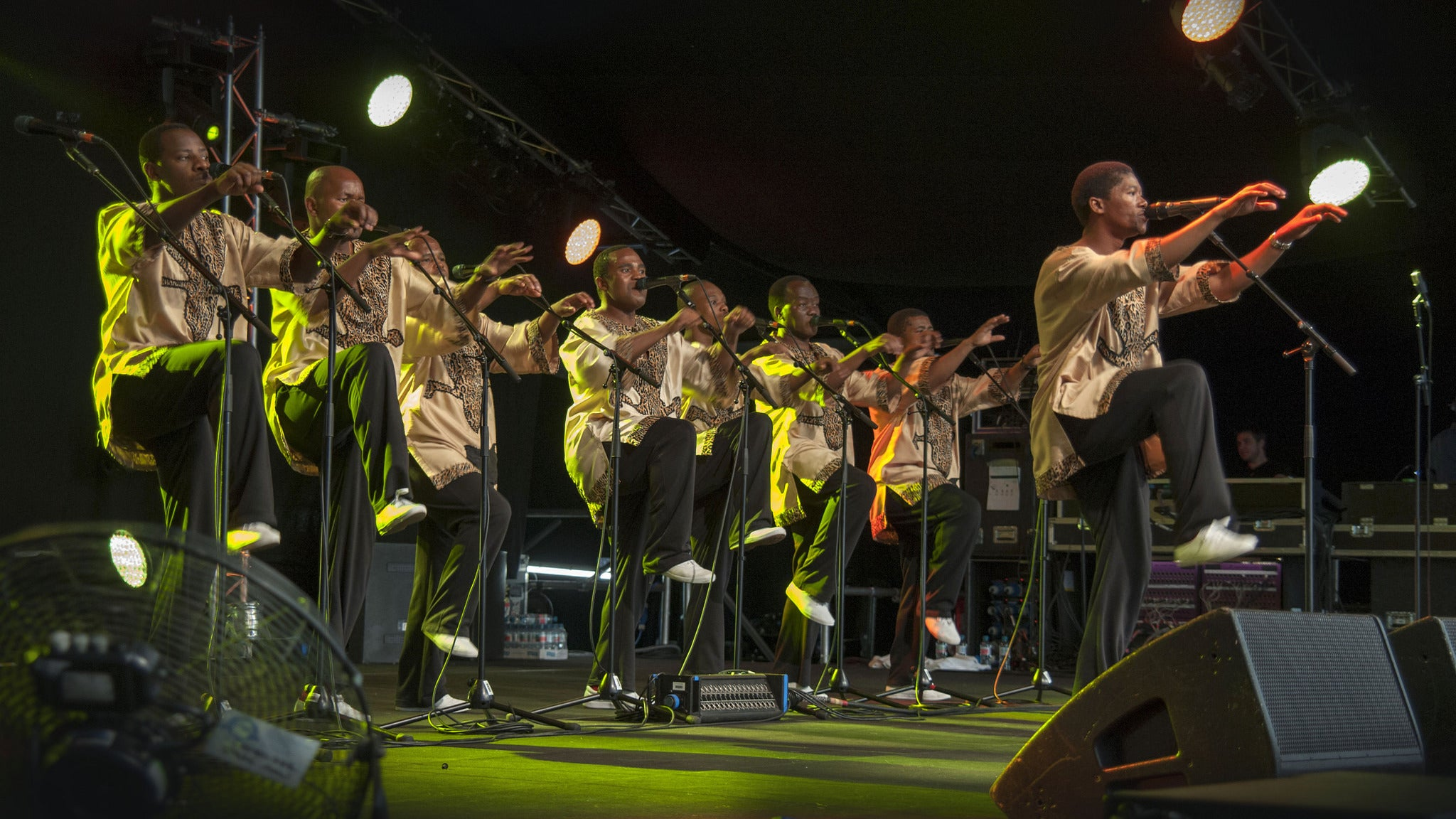 Ladysmith Black Mambazo tickets (Copyright © Ticketmaster)