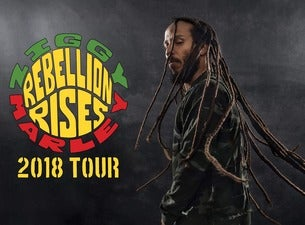 Ziggy Marley / Michael Franti & Spearhead
