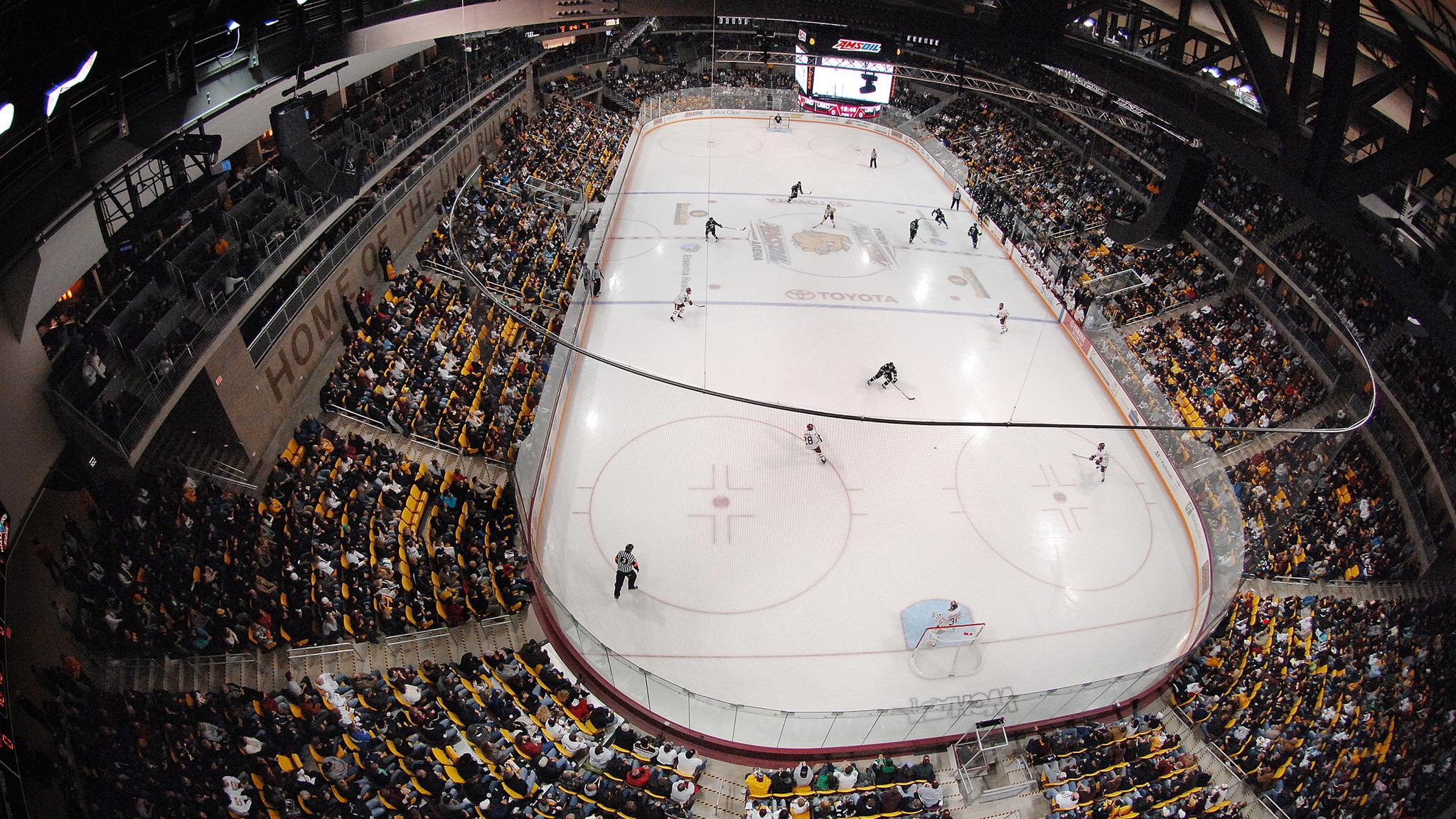 University of Minnesota Duluth Bulldogs Mens Hockey
