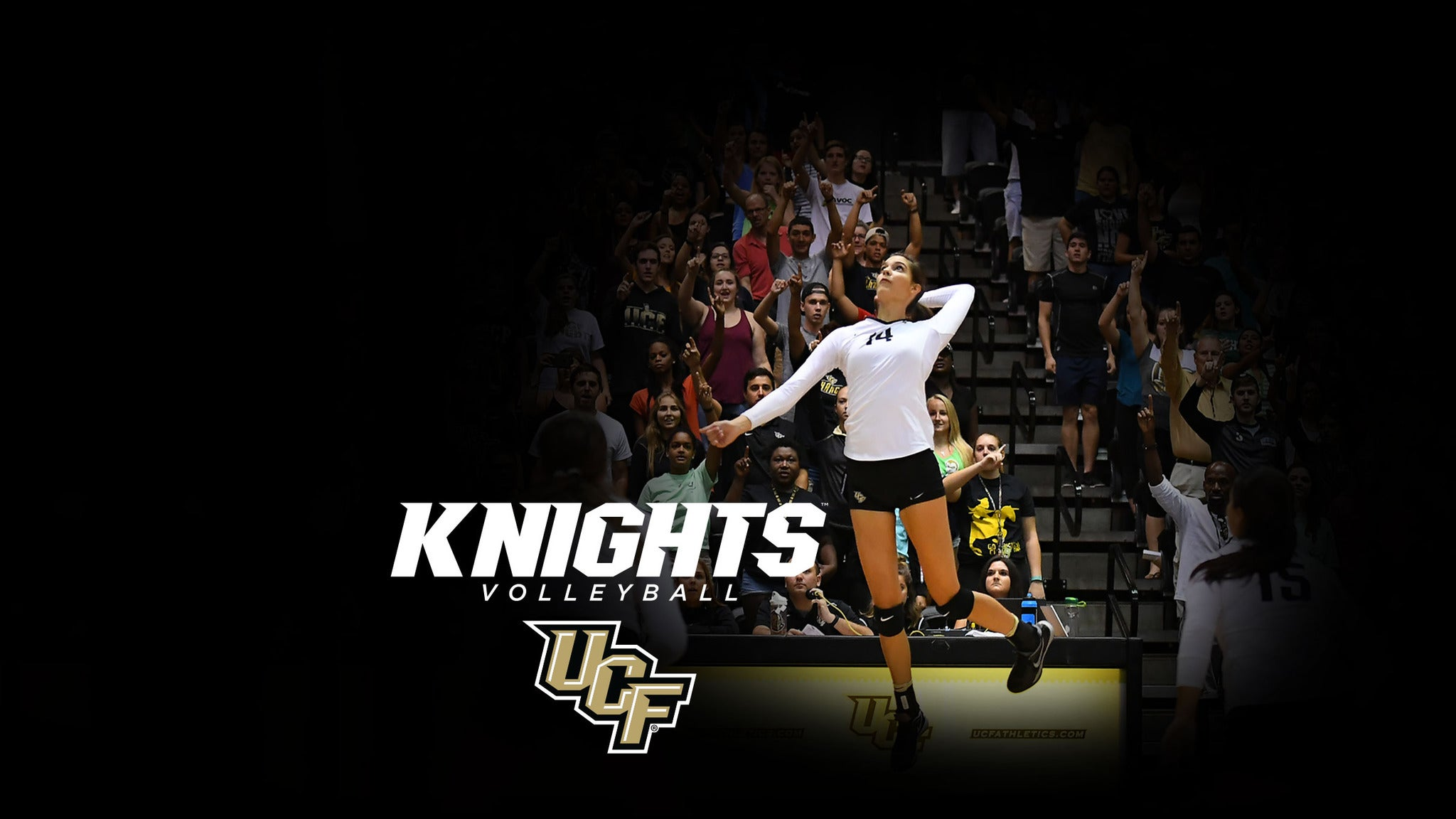 UCF Knights Volleyball vs. USF Volleyball