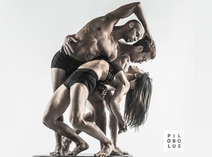 Pilobolus: Come To Your Senses