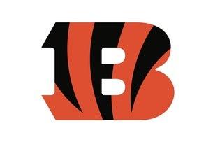 Cincinnati Bengals vs. Pittsburgh Steelers