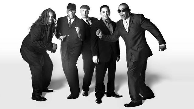 The Untouchables, Los Nauticals, The Stepdaughters, Indica Roots