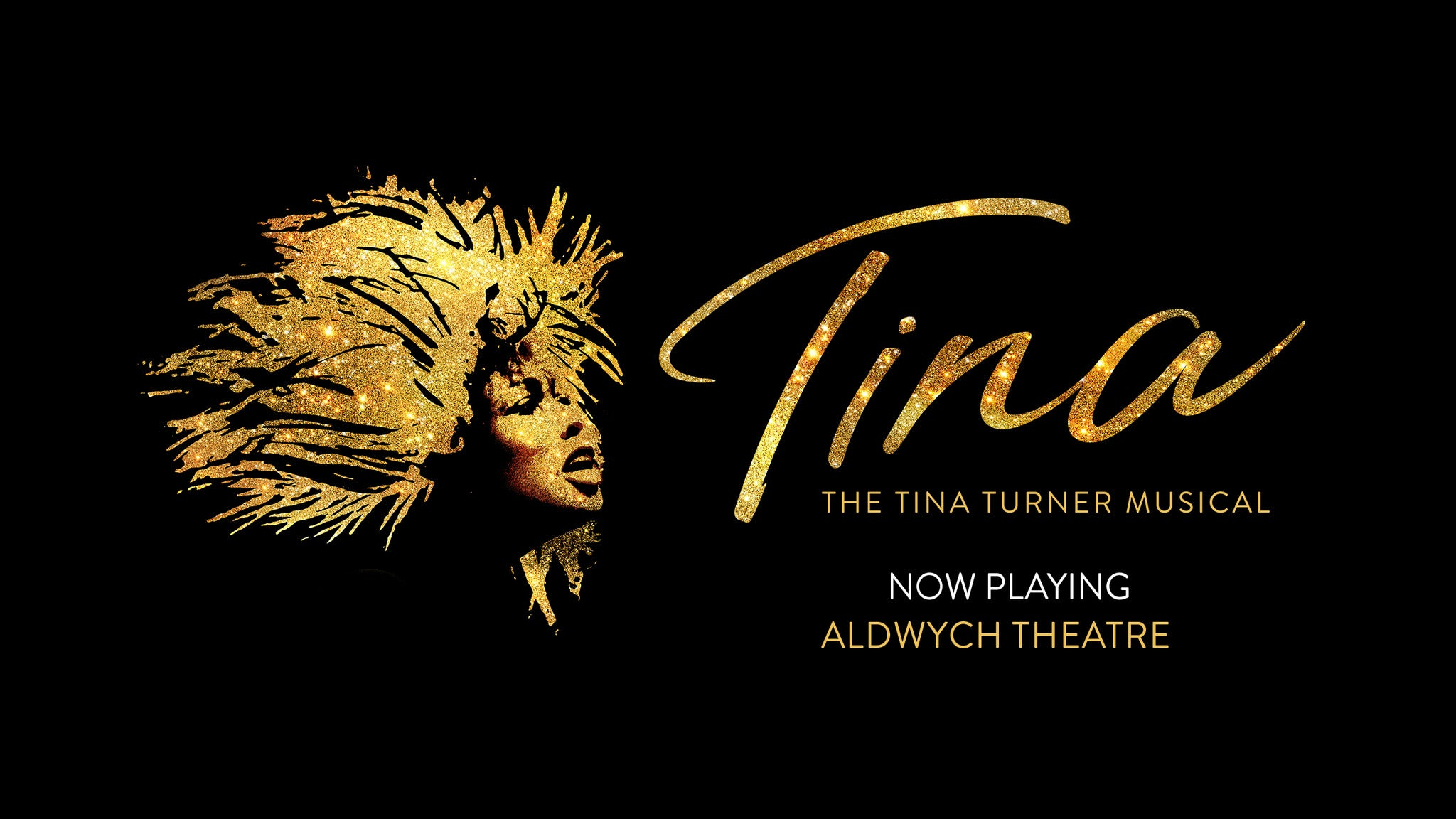 TINA - The Tina Turner Musical Event Title Pic