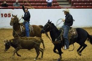 Houston Rodeo w/ Cardi B