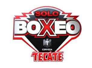 Solo Boxeo Championship Boxing