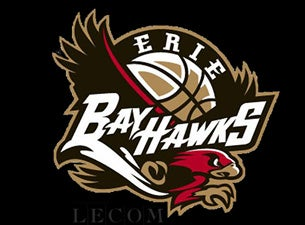 Windy City Bulls at Erie BayHawks at Erie Insurance Arena
