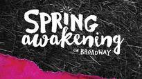 Spring Awakening (NY)