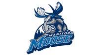 Manitoba Moose