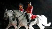 Royal Lipizzaner Stallions
