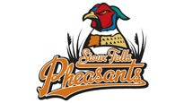 Sioux Falls Fighting Pheasants